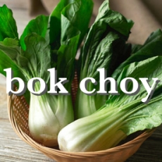 bok choyx_Fotor