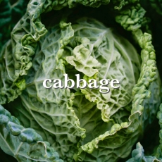 cabbage_Fotor