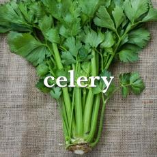 celery_Fotor