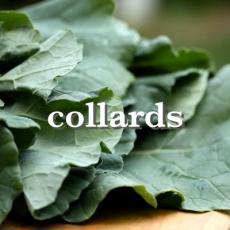 collardsx_Fotor