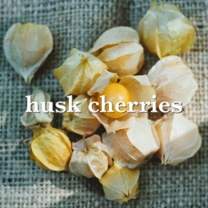 husk cherries_Fotor