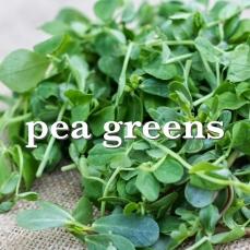 pea greens_Fotor