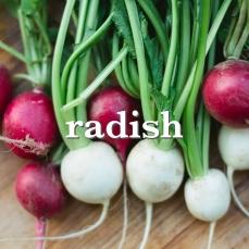 radish_Fotor