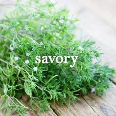 savory2