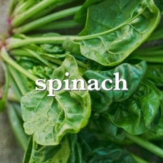 spinach_Fotor