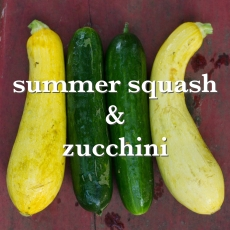 summer squashes_Fotor