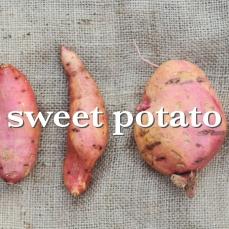 sweetpotato_Fotor