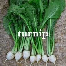 turnips_Fotor