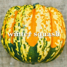 winter squash_Fotor